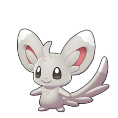 Sprite of Minccino in Pokémon Sword/Shield