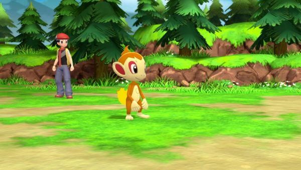 Chimchar in battle