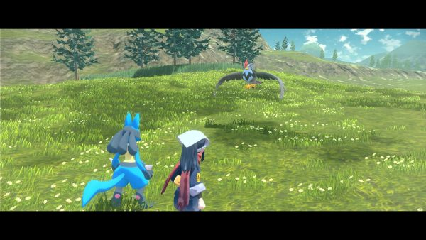 Player and Lucario looking at Staraptor
