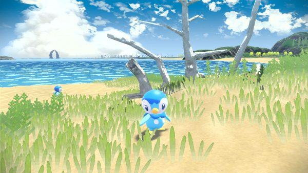 A wild Piplup