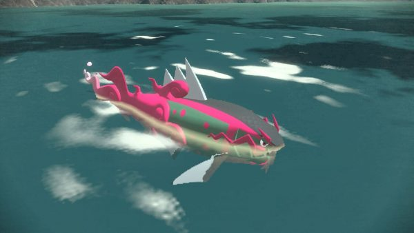 Basculegion swimming