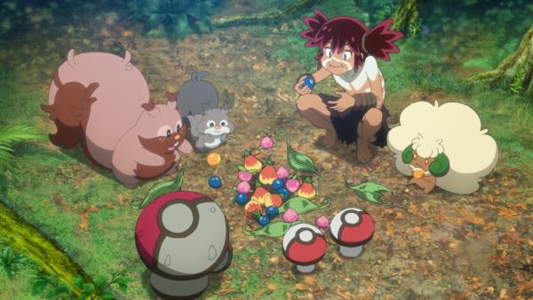 Koko with berries and some Pokémon